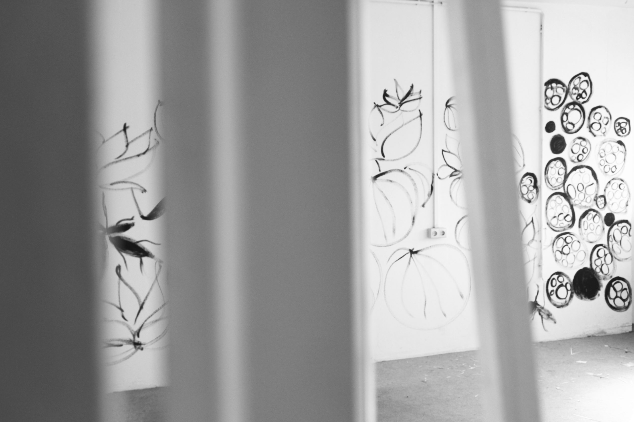 der Blick durch eine Tür hindurch zeigt einen weißen Raum, dessen Wände mit schwarzen floralen Formen bemalt sind | the view through a door shows a white room with walls painted with black floral shapes